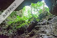 亜熱帯ジャングルウォーキングツアー・鍾乳洞の中から編