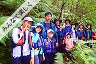 西表島マングローブカヌー&滝あそびいっぱいツアー滝つぼ編