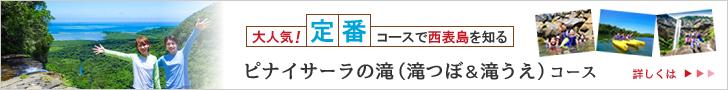 西表島ピナイサーラの滝(滝つぼ&滝うえ)コース詳細