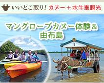 カヌー観光