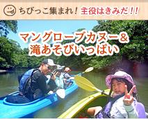 西表島ピナイサーラの滝&由布島コース