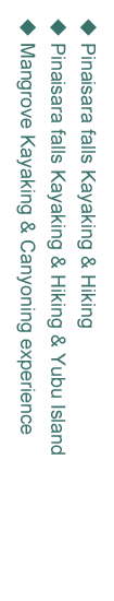 西表島カヌーツアーコース01