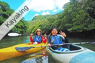 Iriomote Island, Mangrove kayaking & Yubu Island tour, Water fall bsin