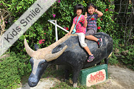 Iriomote Island, Mangrove kayaking & Yubu Island tour, Yubu island