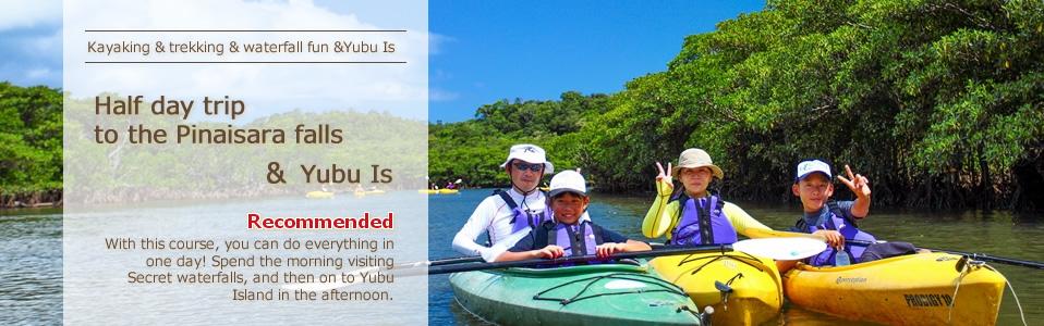 Iriomote Island, Mangrove kayaking & Yubu Island tour