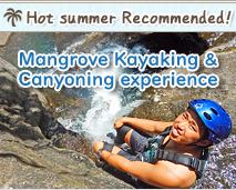 西表島マングローブカヌー&キャニオニング体験コース