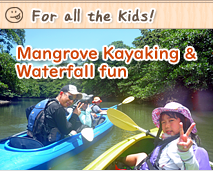 iriomote mangrove kayaking & waterfall fun