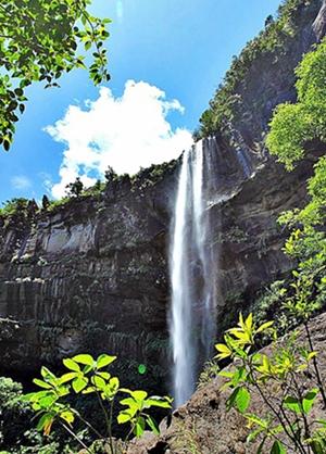 西表島ピナイサーラの滝
