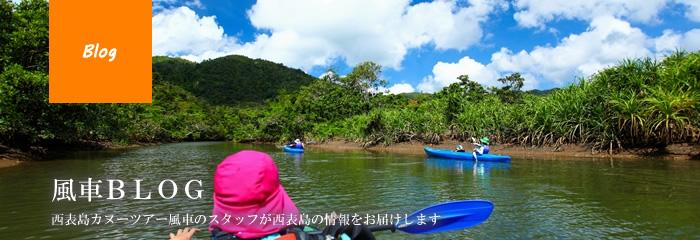 西表島カヌーツアー風車スタッフブログ