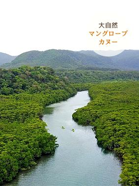 西表島マングローブカヌー体験ツアー