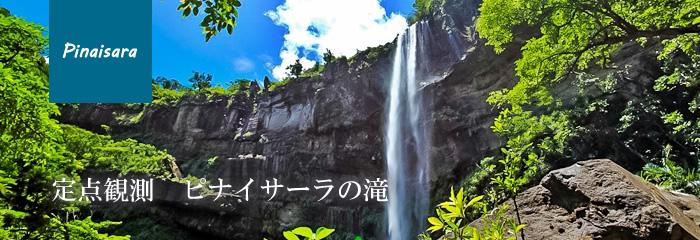 西表島ピナイサーラの滝・定点観測