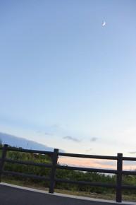 b_1407_7月の西表島12